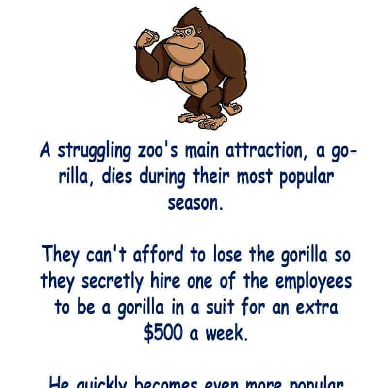 A man gets a job at the zoo dressed as a gorilla -funny joke