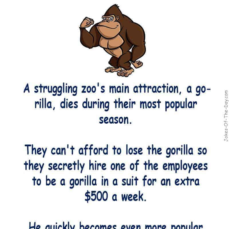 A struggling zoo's gorilla dies during their busiest season and they can't afford to replace him, so they hire one of the employees to... - funny joke