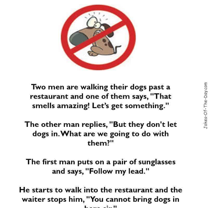 Two men are walking their dogs and enter a restaurant - funny short joke