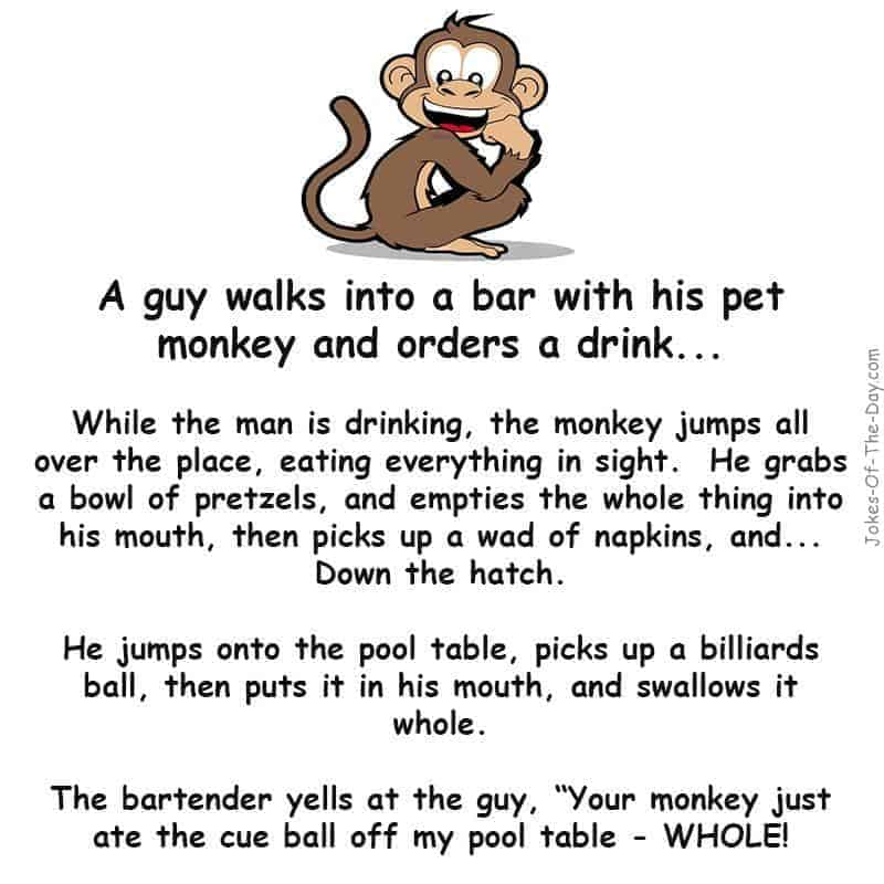 A guy walks into a bar with his pet monkey. He orders a drink, and while he's drinking, the monkey jumps all over the place - funny joke