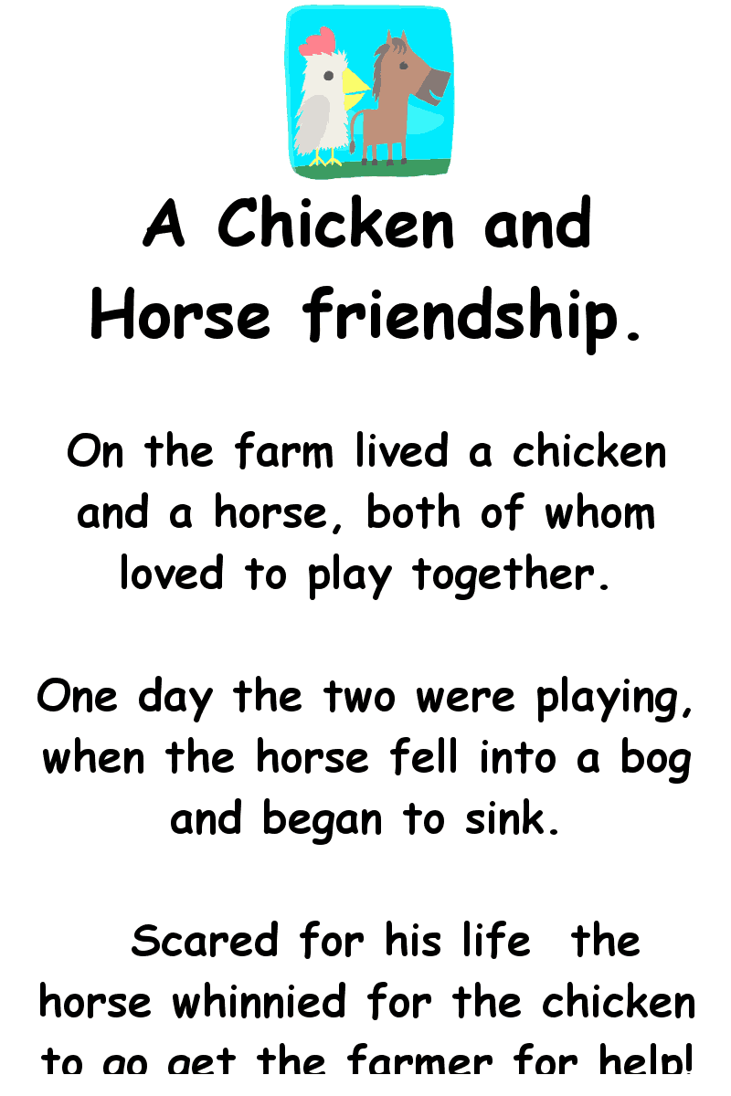 A chicken and horse friendship - funny joke of the day