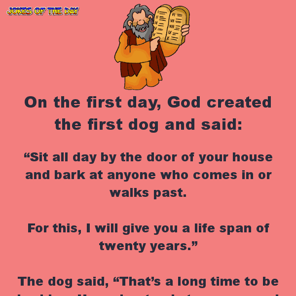 When god created man - funny clean joke of the day