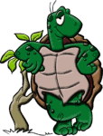 Cartoon-turtle