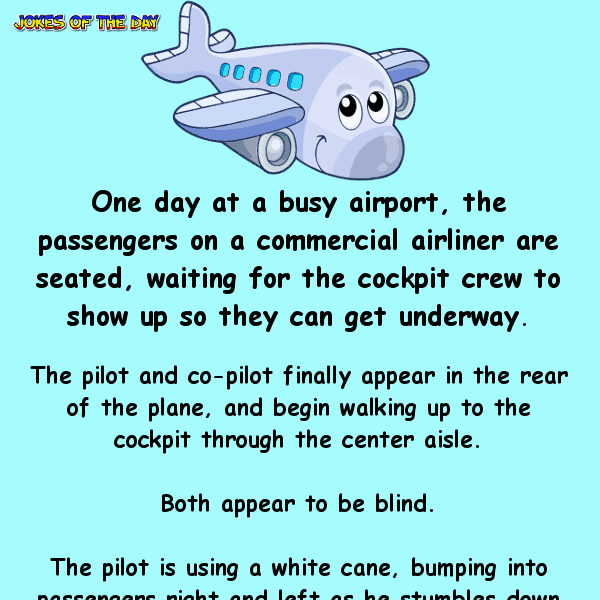 Passengers panic when they realize that the pilots are blind