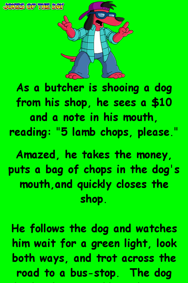 The dog goes to a butcher - funny clean joke