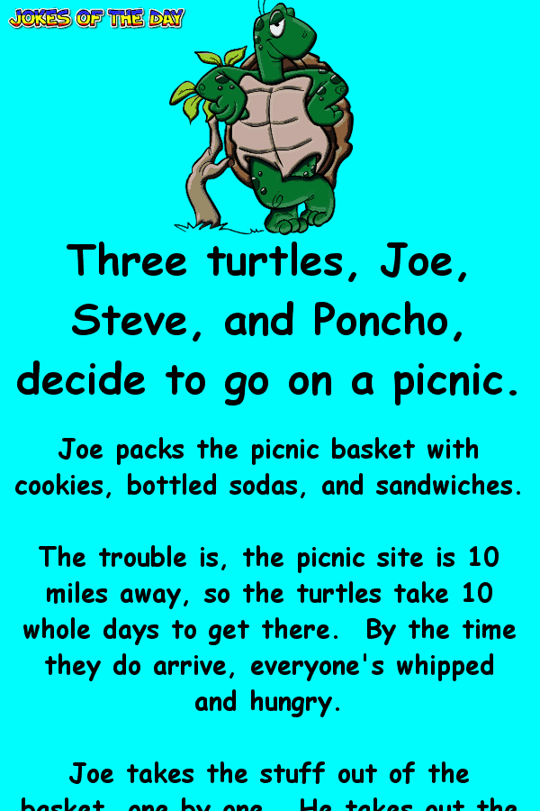 Three turtles decide to go on a picnic - clean joke