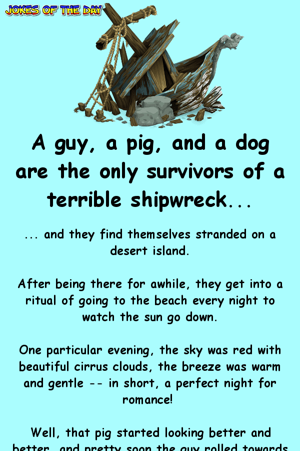 A guy, a pig, and a dog are the only survivors of a terrible shipwreck