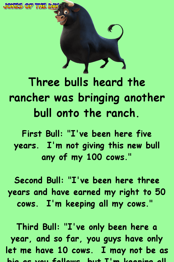 Funny Clean Joke Of The Day - Three bulls heard the rancher was bringing another bull onto the ranch