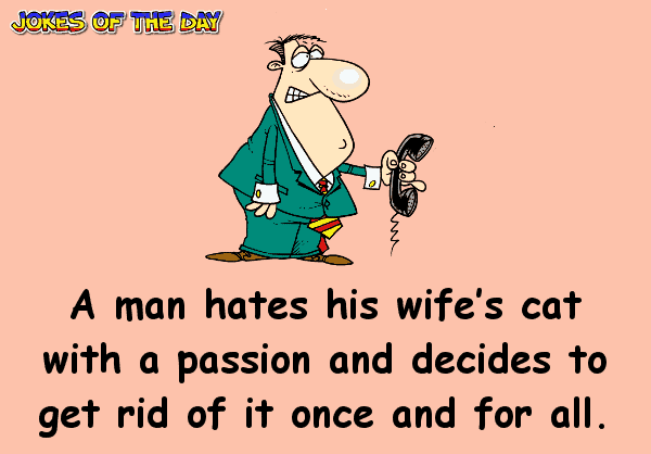 Funny Cat Joke - A man hates his wife's cat with a passion and decides to get rid of it once and for all