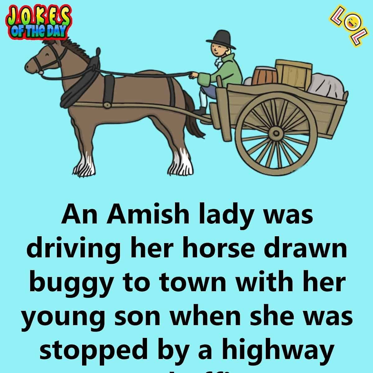 An Amish Lady Driving Her Horse Drawn Buggy Is Pulled Over By The Police